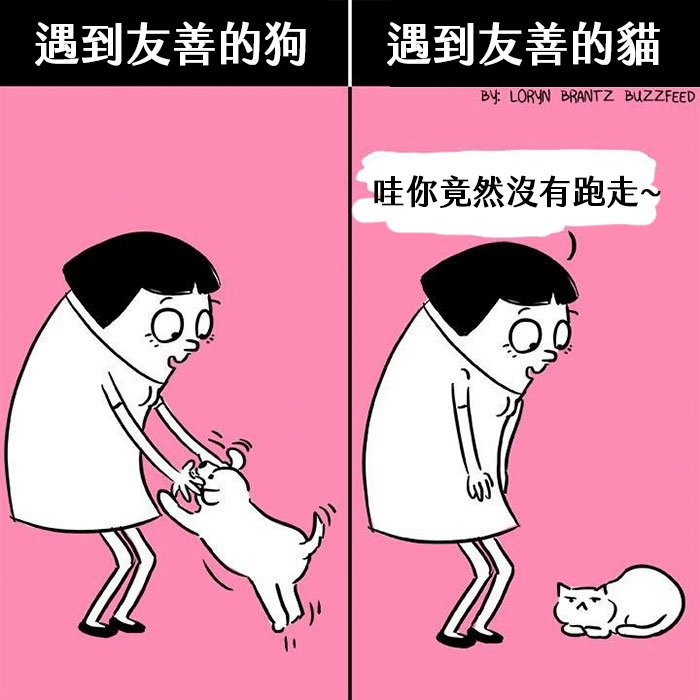 funny-cats-vs-dogs-comics-2-59bfaaf210ff9__700