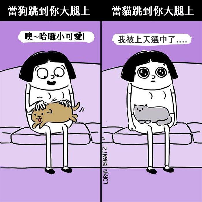 funny-cats-vs-dogs-comics-24-59c12a33a31a7__700