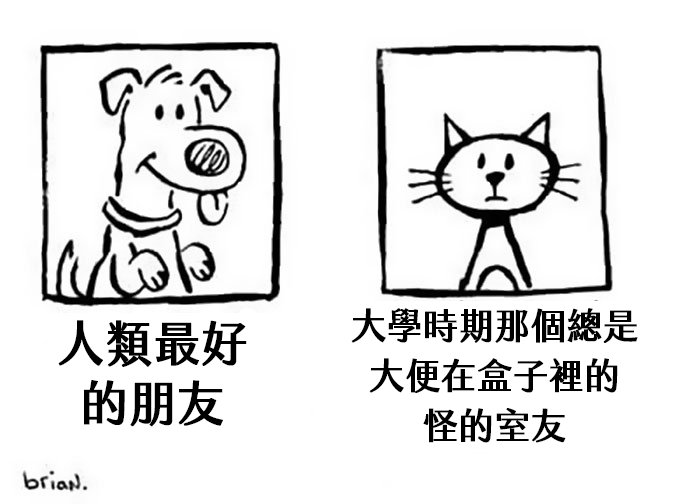 funny-cats-vs-dogs-comics-44-59c8e729c80cc__700