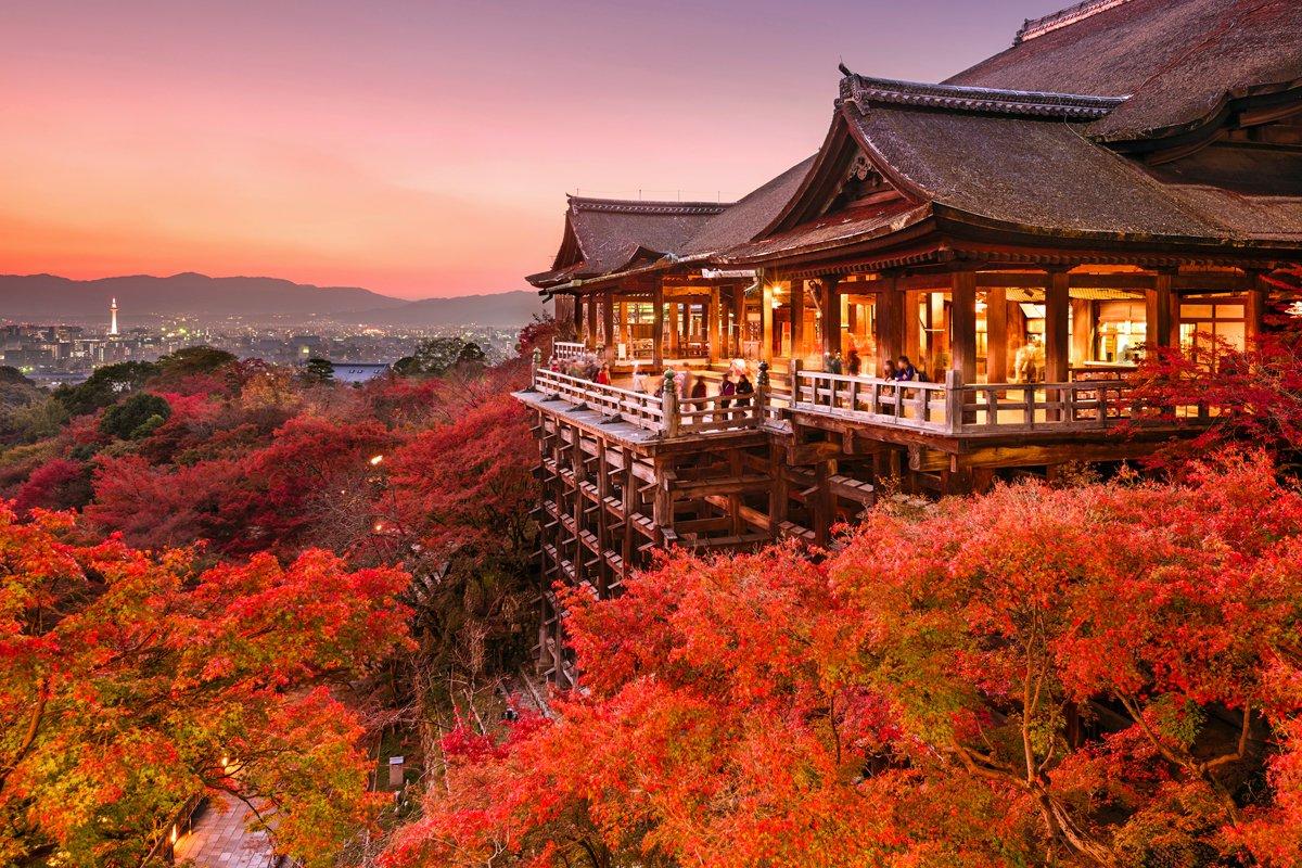 img 5a72e7bbea378 - 人気観光地の京都に裏社会があるとのウワサ