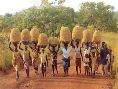 アフリカ에 대한 이미지 검색결과