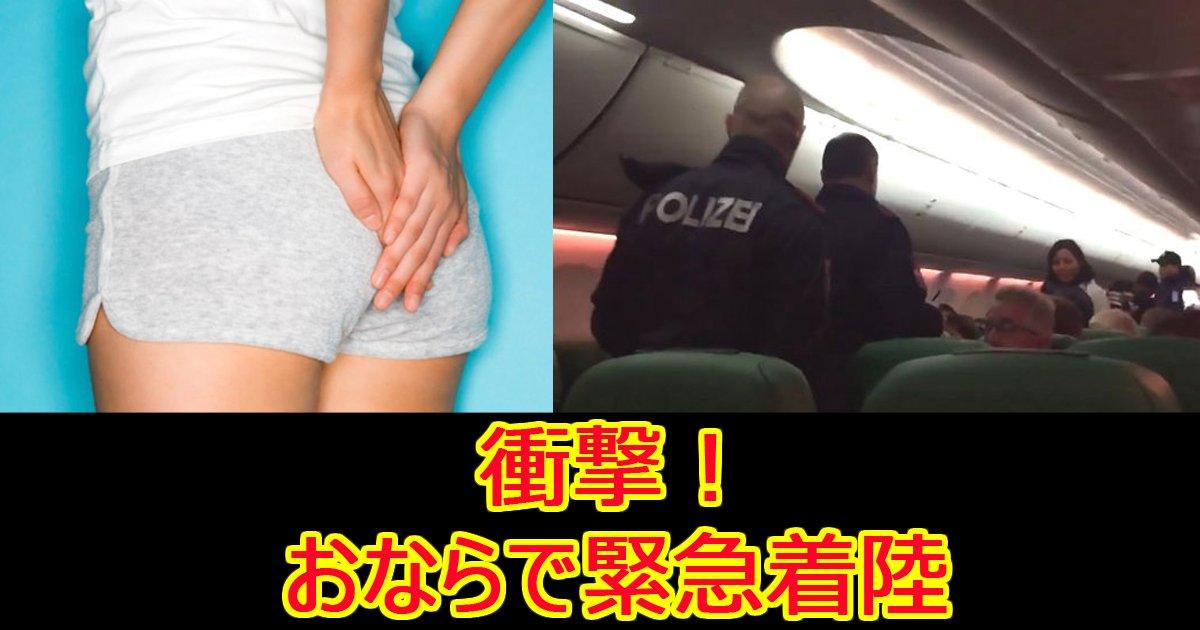 onarahikouki.jpg?resize=1200,630 - 乗客のおならが臭過ぎて飛行機が緊急着陸⁉