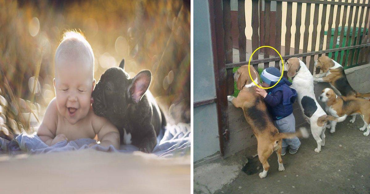 pet featured - 15+ photos adorables qui prouvent que votre enfant a besoin d'un animal de compagnie
