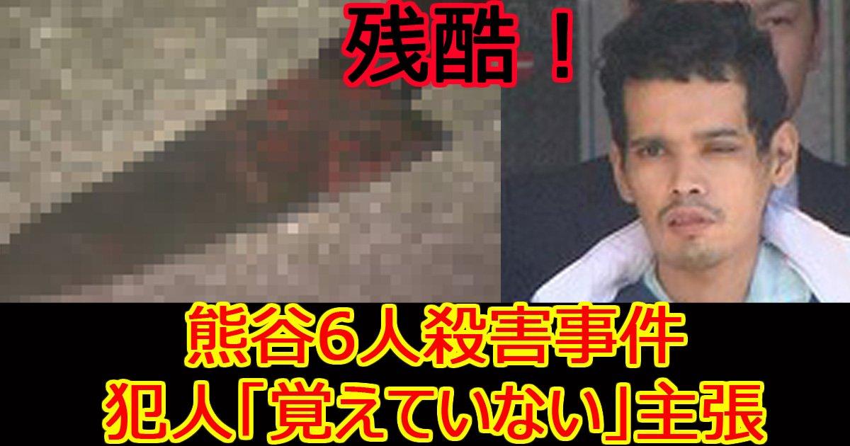 skumayasatuzinnzikenn.jpg?resize=1200,630 - 「覚えていない」「猫が言った」…熊谷6人殺害事件公判