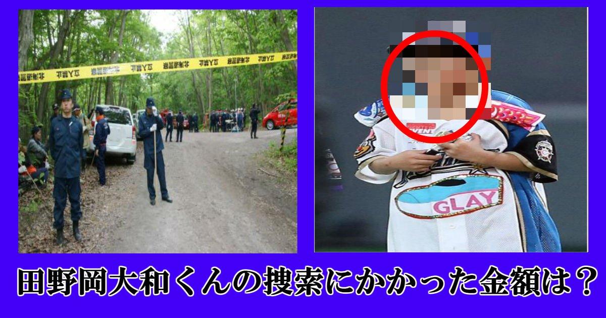 ss 2.jpg?resize=1200,630 - 北海道置き去り事件の田野岡大和くん。実際、捜索にかかった費用は?