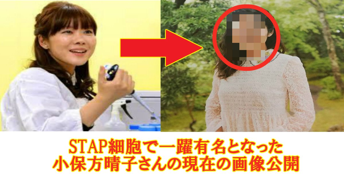 stao - STAP細胞・小保方晴子さんの今現在何してるの?現在の画像を公開!