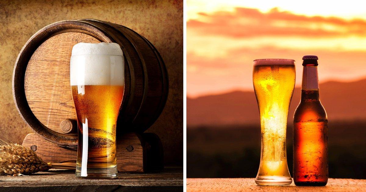 thumbnail5guy.png?resize=1200,630 - Nutricionistas explicam: Uma lata de cerveja tem as mesmas calorias de um pão francês