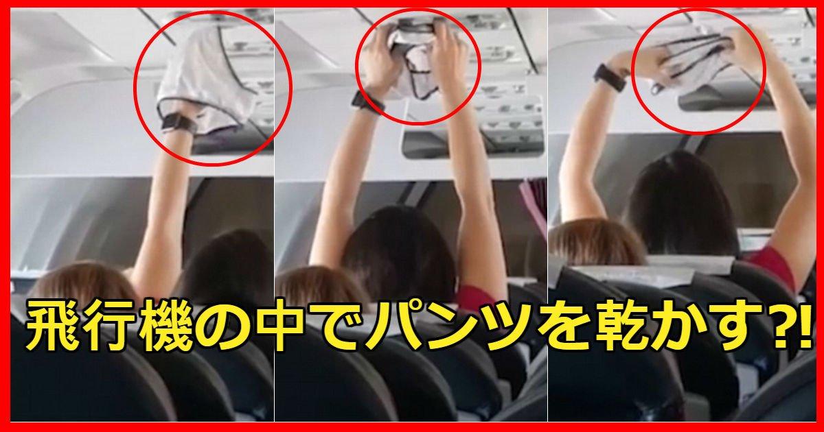 underwear - 飛行機のエアコンの風でパンツ乾かす女性