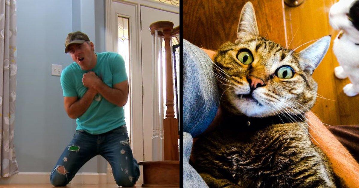 untitled 1 copy 1.jpg?resize=1200,630 - Ce propriétaire d'animal décide de mettre en scène sa propre mort, la réaction de son chat est géniale