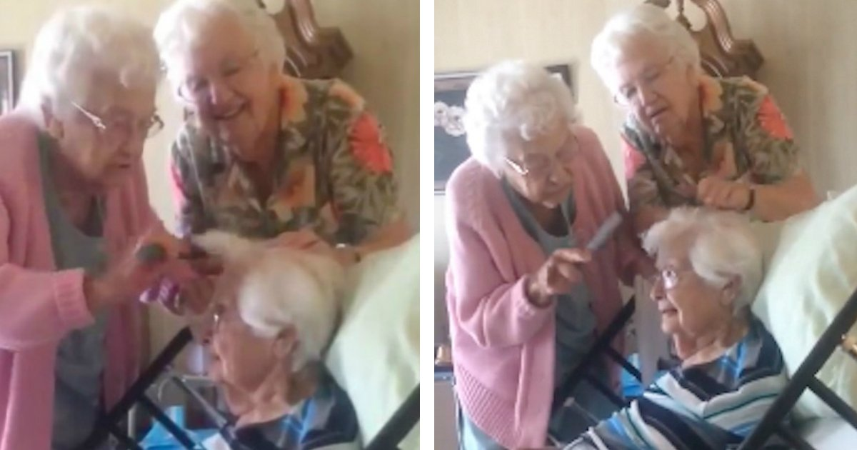 untitled 41.jpg?resize=648,365 - This Cute Video Will Drag Your Attention. These Two Elderly Women Helping Their 97-Year-Old Sister Comb Her Hair In Hospice