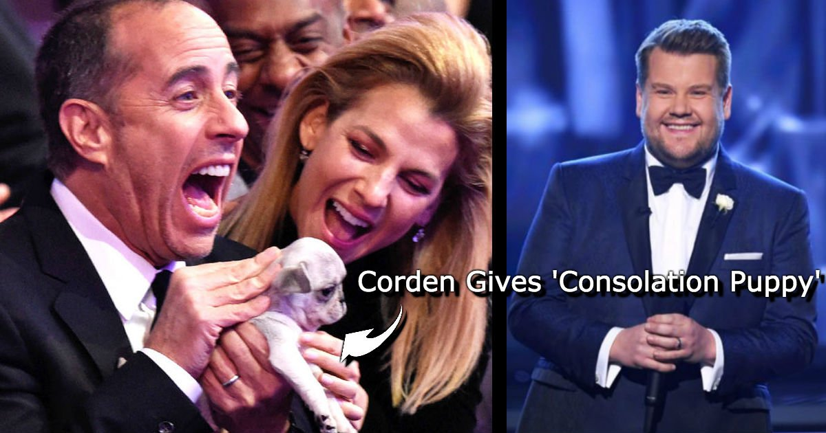untitled 45.jpg?resize=648,365 - James Corden Amuses The Audience At The 60th Grammy Awards When He Hands Out Cute Puppies To Grammy Losers
