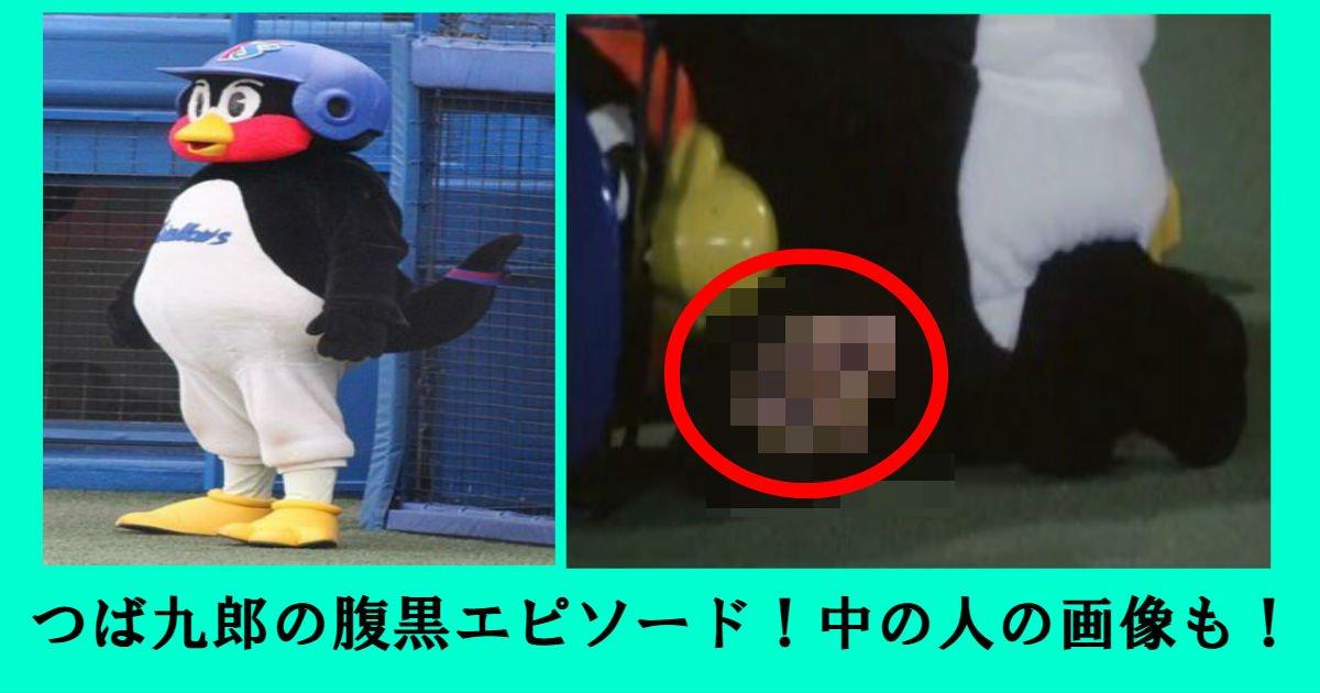yak.jpg?resize=1200,630 - 畜生ペンギンつば九郎の腹黒エピソードとは?!中の人の画像も発掘!