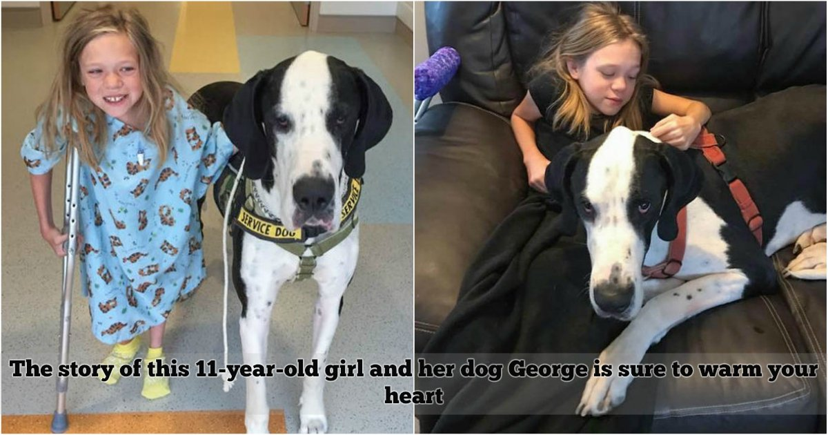 "1 439.jpg?resize=300,169 - This 11-Year-Old Girl Planned A ""Dog's Best Day"" For Her Beloved Dog, Their Story Will Warm Your Heart"