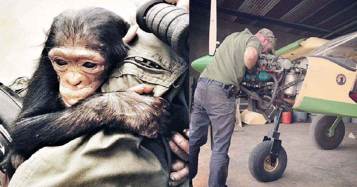 1 69 - 엄마 잃고 떠돌다 구조된 아기 침팬지의 첫 번째 비행 (영상)