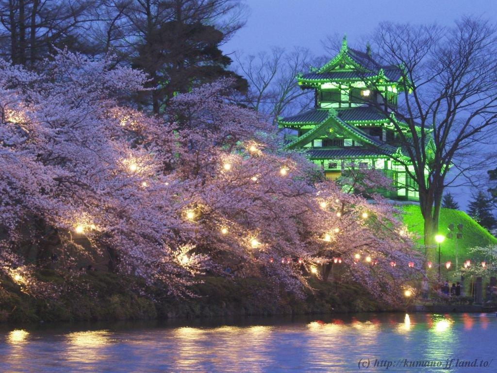 高田城百万人観桜会에 대한 이미지 검색결과
