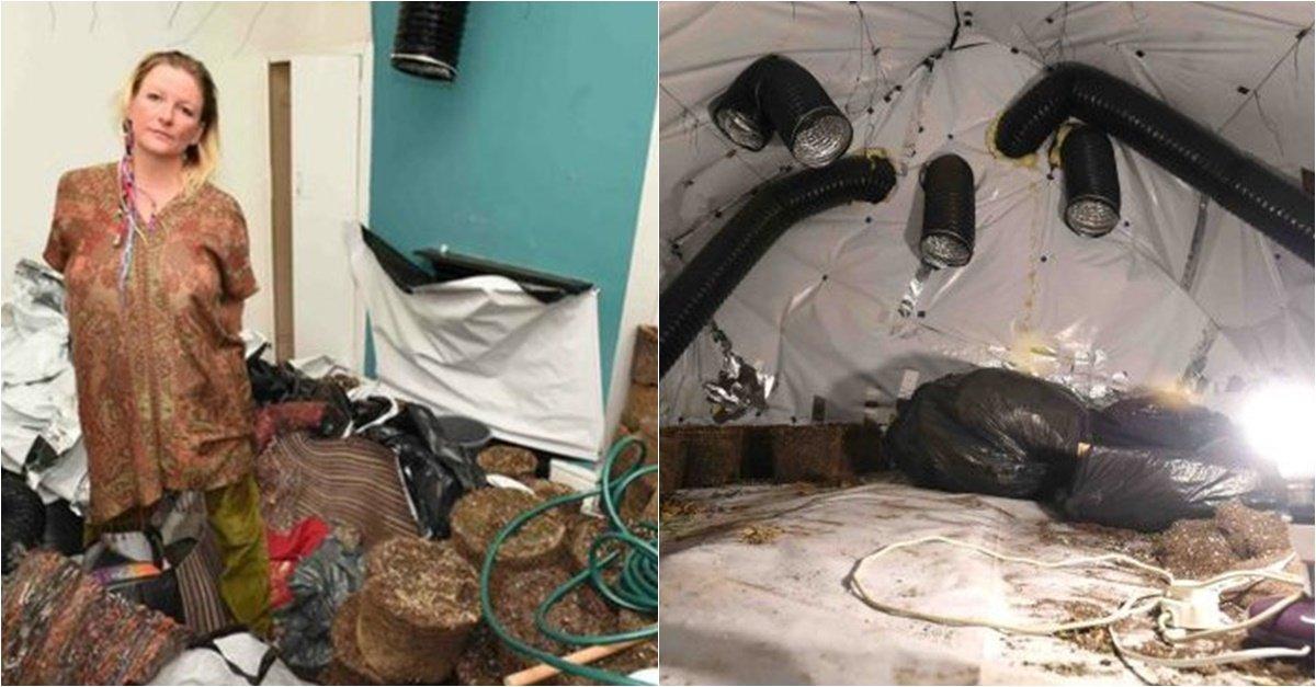 20180317161039 0 - 韓国人家族に家を貸し「大麻爆弾」を落とされたイギリス女性