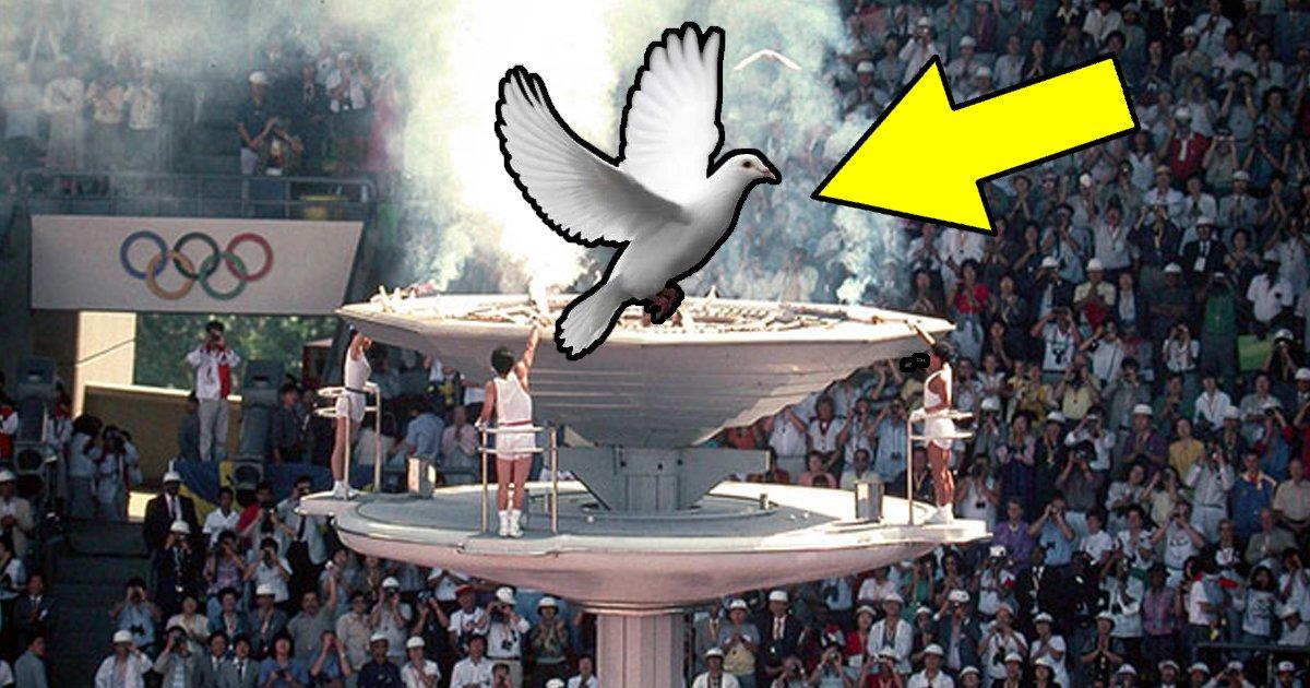 55 5.jpg?resize=412,232 - '비둘기 화형식' 이후 다시는 올림픽에서 비둘기를 볼 수 없었다(영상)
