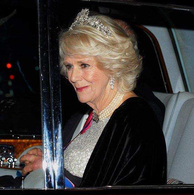 150664418559cd90d9ab34d - Sorprendentes datos que no conocías sobre Camilla, la elegante esposa del Príncipe Carlos