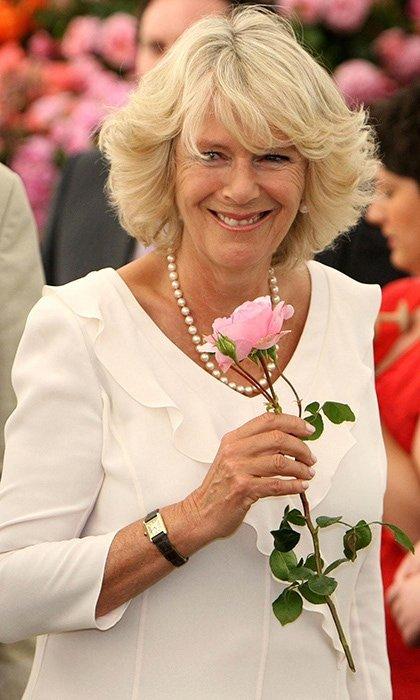 150664418959cd90dd16786 - Sorprendentes datos que no conocías sobre Camilla, la elegante esposa del Príncipe Carlos