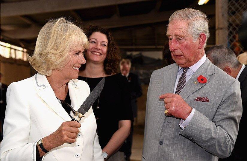 150664419159cd90df58959 - Sorprendentes datos que no conocías sobre Camilla, la elegante esposa del Príncipe Carlos