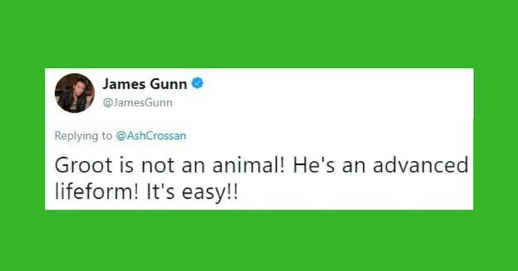 ac62e94a ef9d 4e64 aa2d 5363826e0bdd - James Gunn Shocked Fans When He Revealed That Groot Is Dead And That Baby Groot Is His Son