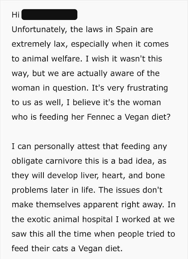 fennec fox vegan diet animal abuse jumanji sonia sae 23 5aa0fc0c0fb9e  605 - Vegan YouTuber Puts Her Pet Fox On A Vegan Diet And Ignites An Internet Firestorm