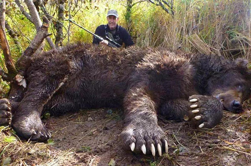 s uT3XPXA2uLvalOTWysZJe2EjBvX - 27 casos de animales que crecieron hasta lograr tamaños monstruosos