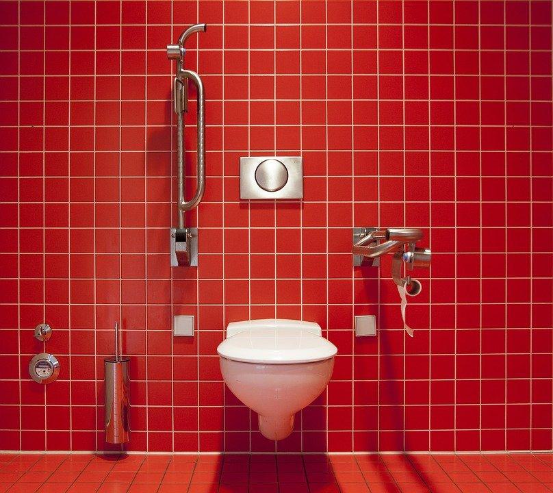 toilet pixabay에 대한 이미지 검색결과