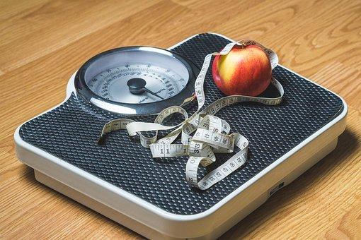 체중 감소, 중량, 영양, 규모, 체중 관리, 중량이 초과 된, 저체중