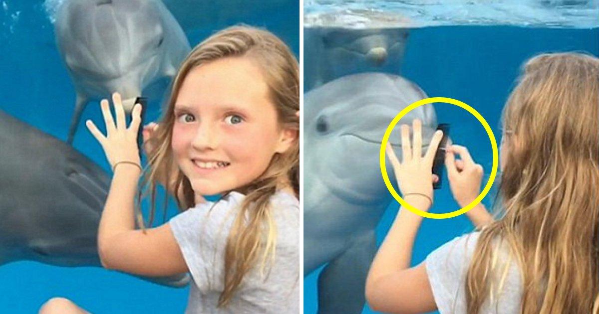 article thumbnail 51 - Niña convoca a delfines usando un sencillo truco (video)