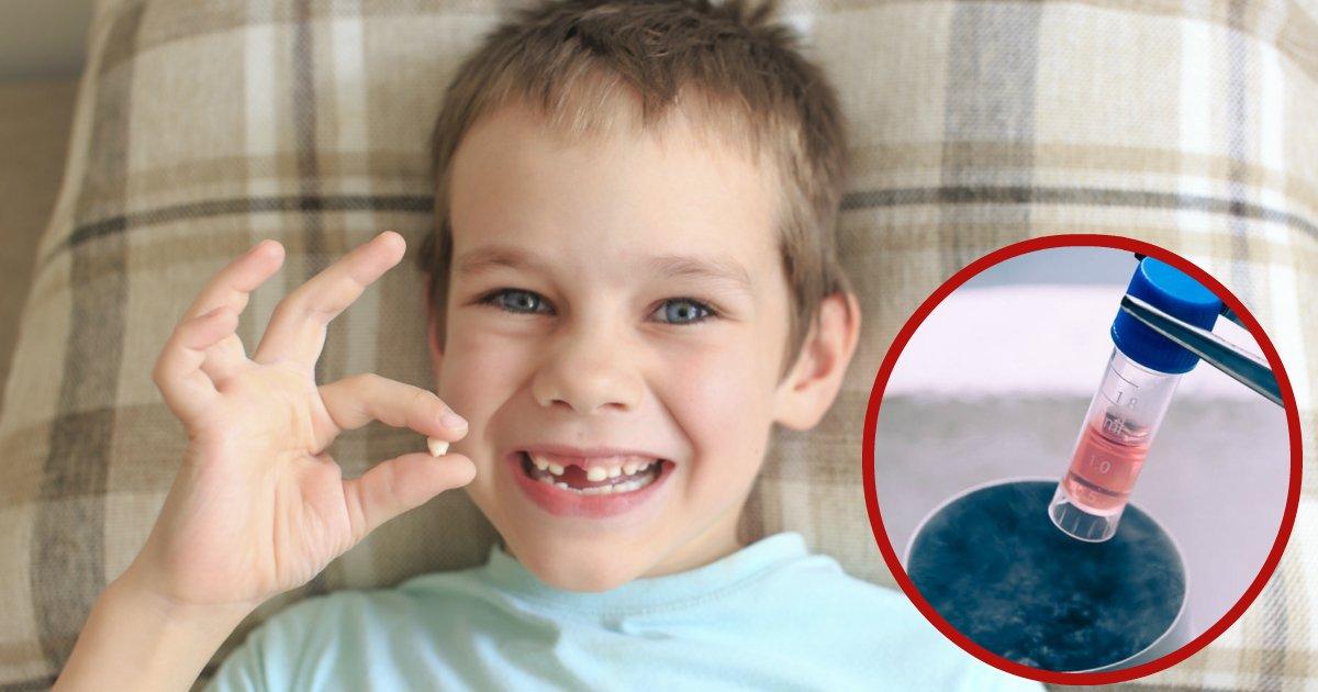 babyteeth.jpg?resize=648,365 - Conserva los dientes de leche de tus hijos, ya que pueden salvarles la vida algún día