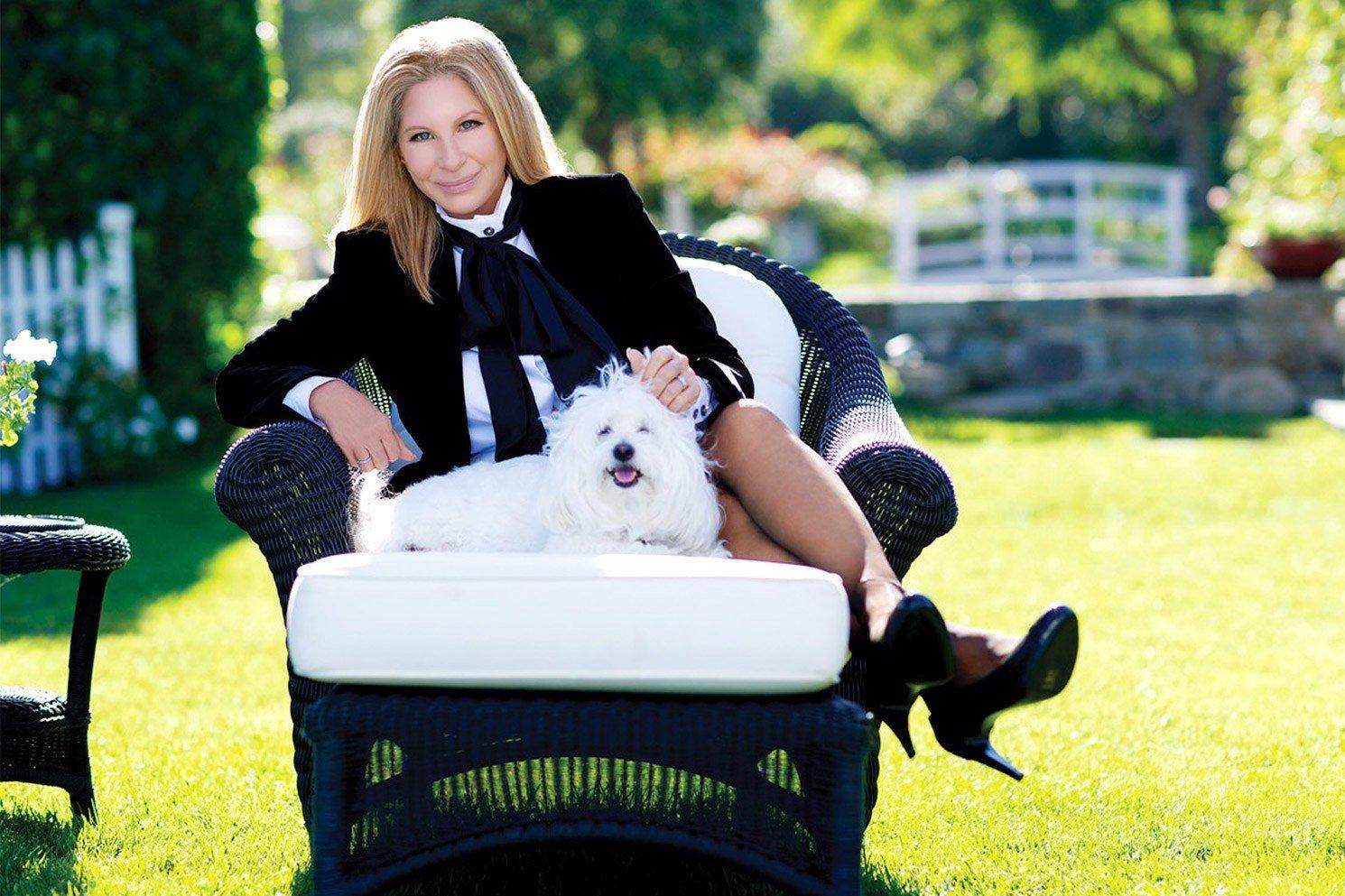 barbra streisand dog clone.jpg?resize=1200,630 - Barbra Streisand revela que clonou sua cadela favorita