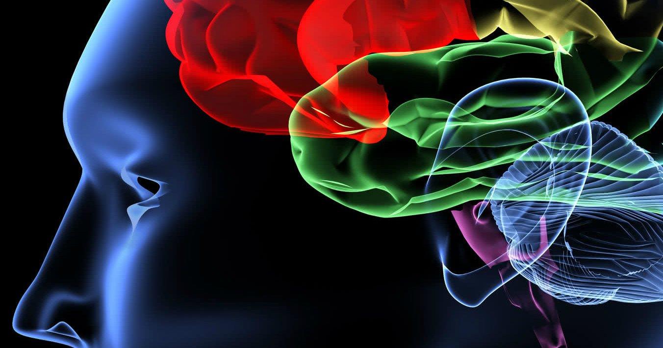 cerebro derrame avc 2.jpg?resize=300,169 - Sinais de um AVC para você ficar atento