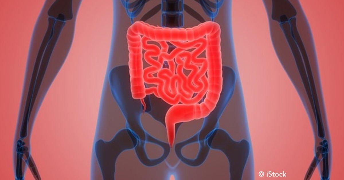 cover 70.jpg?resize=300,169 - Síndrome de Intestino Irritable: qué comer y qué evitar