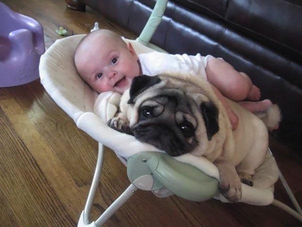 cute-kids-dogs-best-friends-friendship-150-5a99009fb9f87__605