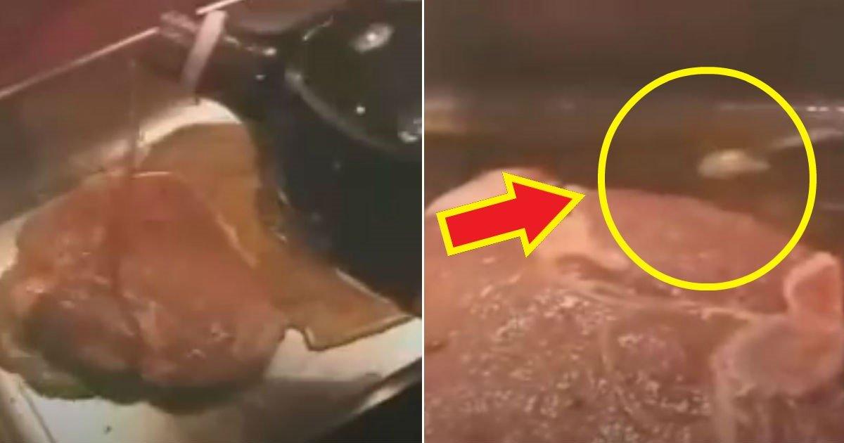 dsfasdf - 돼지고기를 '콜라'에 담그면 '구더기' 나온다는 동영상의 진실(영상)