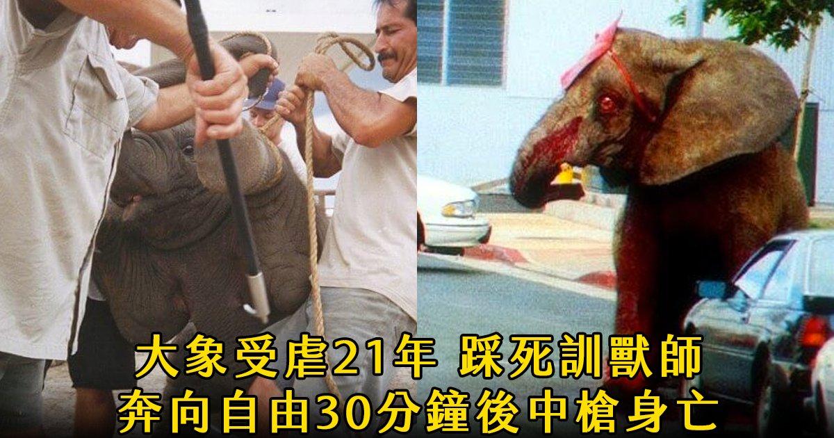 e69caae591bde5908d 1 30.png?resize=1200,630 - 一生受盡虐待,身中86槍亡,只因人類想看一些獵奇荒謬的表演