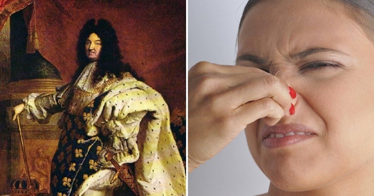 eab7b9ed9890 - Las 4 razones por las que Luis XIV fue el rey más apestoso de la historia