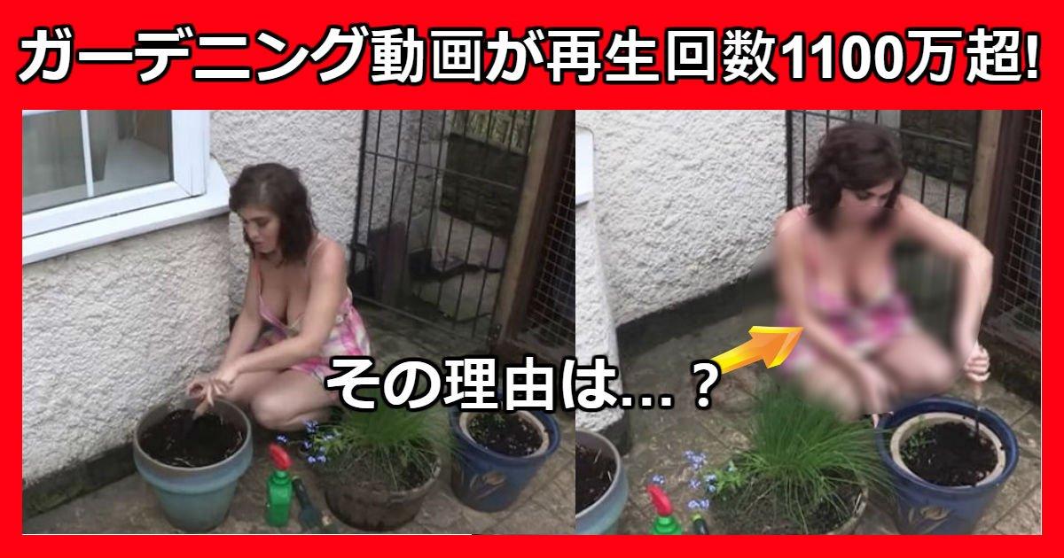 flower.jpg?resize=1200,630 - 女性が植木鉢に花を植える映像が5日間で「再生回数1100万」超(映像)