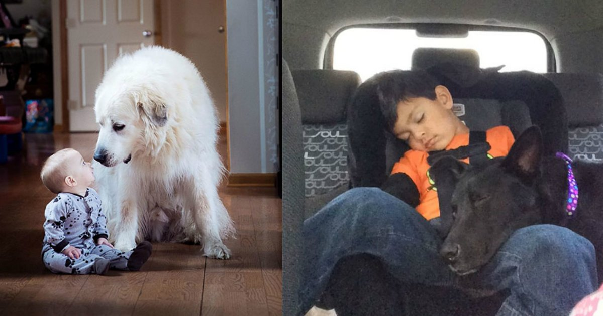 kidanddogs - Still Think You Don't Need A Dog For Your Kids After Seeing These?