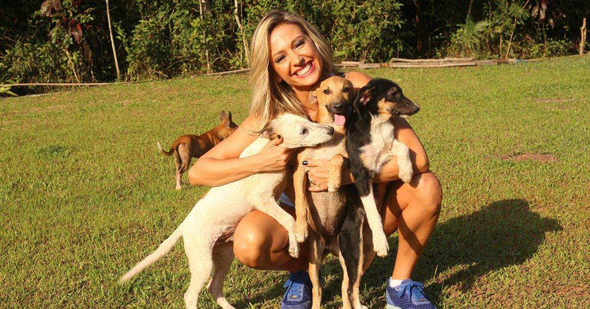 luisa.png?resize=1200,630 - Luisa Mell resgata mais de 100 cães de raça de canil