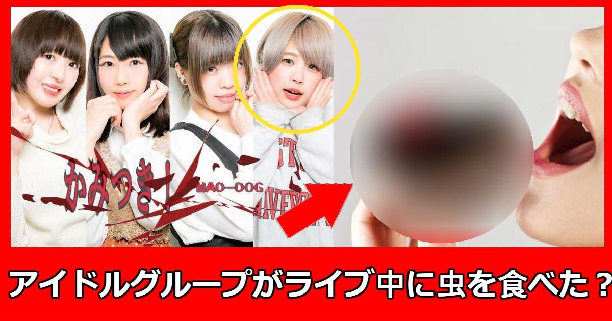 mad dog.jpg?resize=1200,630 - 新人地下アイドルグループがデビューライブ中「カブトムシを食べて」解雇