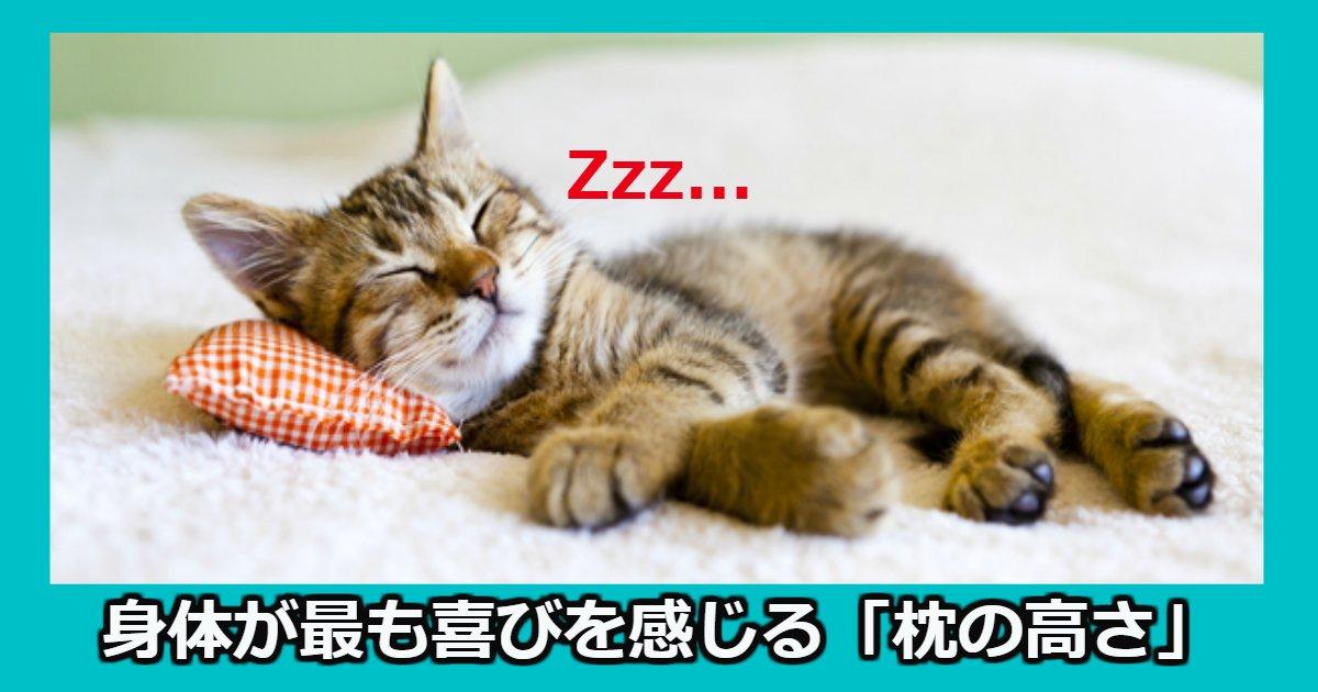 makura.png?resize=1200,630 - 睡眠時、身体が最も喜びを感じる「枕の高さ」