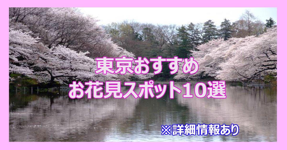 ohanami 1.png?resize=412,232 - 東京おすすめお花見スポット10選まとめ!