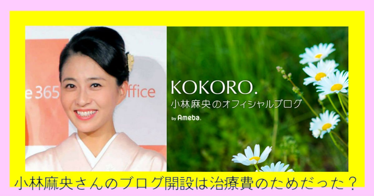 sdg - 小林麻央さんのブログ開設には他の理由があった?