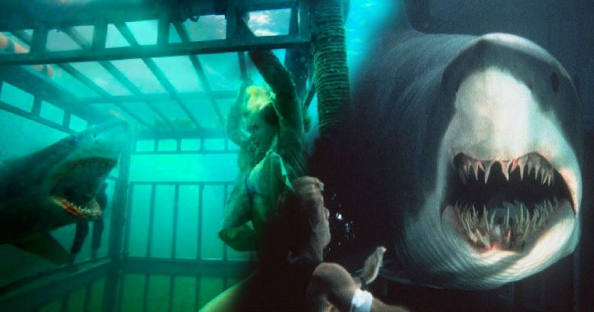 shark - Top 10 Intense Shark Movies That Will Get Your Blood Pumping