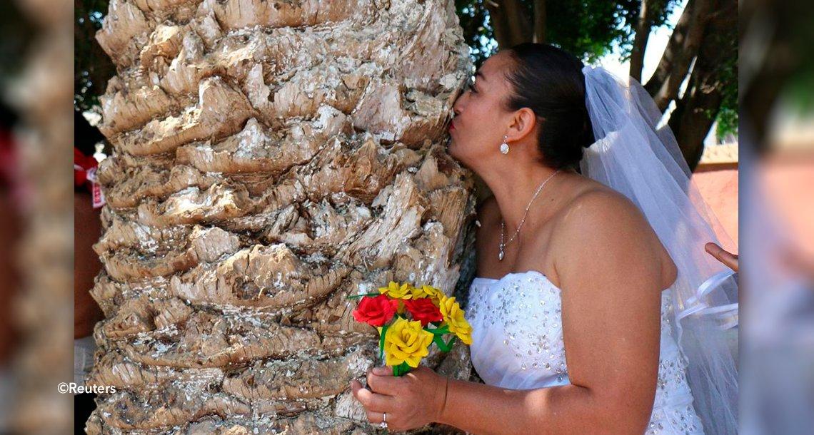 "template covercas.png?resize=1200,630 - Estas personas deciden ""contraer matrimonio"" con árboles para ayudar al planeta"