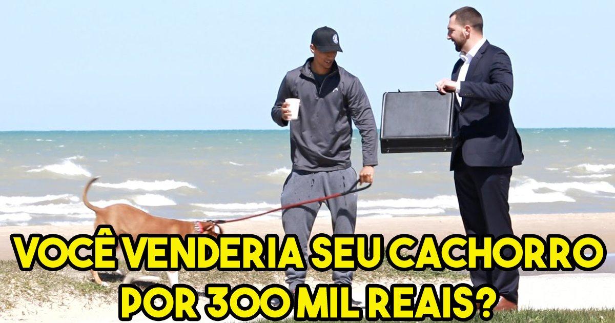 thumbnail5gaq4ttek.png?resize=300,169 - Experimento social: Você venderia seu cachorro por 300 mil reais?