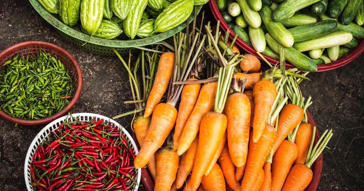 thumbnail5go 1.png?resize=1200,630 - Crianças doam alimentos plantados por elas mesmas para moradores de rua
