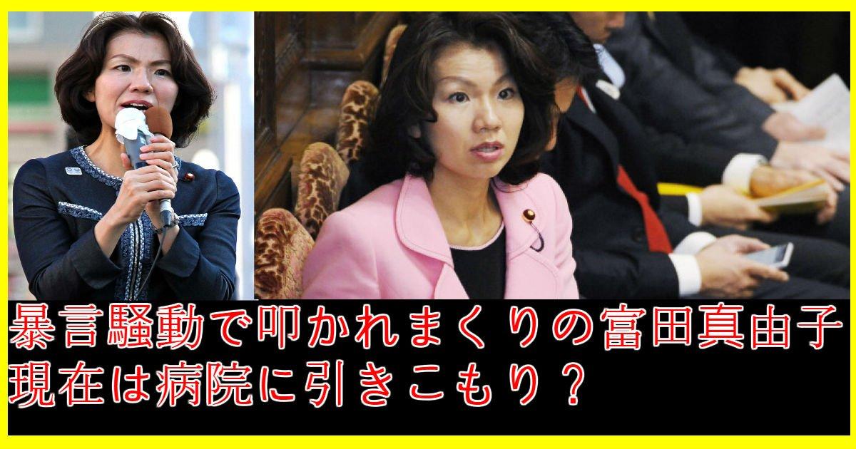 tomita.jpg?resize=300,169 - 富田真由子の家族、暴言騒動、現在まで総まとめ